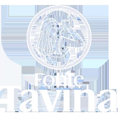 Fonte Tavina