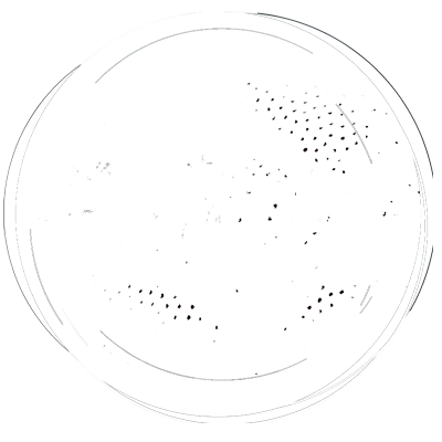 Slums Dunk